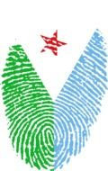Fingerprint in the colors of the flag of Djibouti