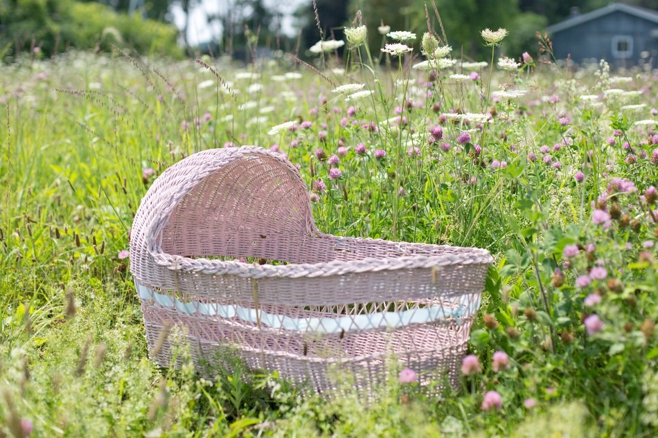 baby bassinet pink in field