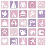 Vector Set of Color Wedding Icons N6