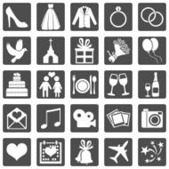 Vector Set of Color Wedding Icons N12