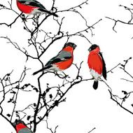 Bullfinches on the branch seamless vector pattern