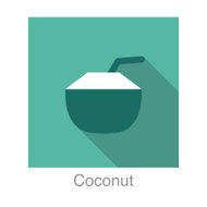 Coconut food and drink flat icon series
