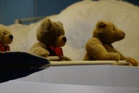 teddy bears in the boat