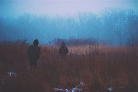 two young boys walking in foggy wilderness