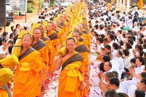 buddhists monks in orange robes