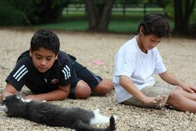 boys playing with cat