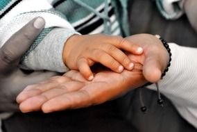baby hand bounded in father\'s hand, the combined hands of family members
