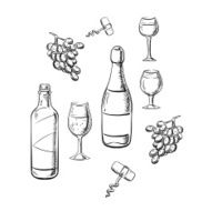 Bottles of wine glasses and grape sketches