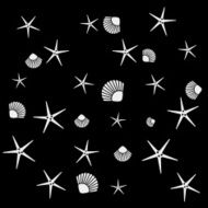 Geometric simple monochrome minimalistic vector holiday pattern starfish and shell