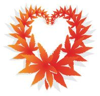 Orange and red fall design element with maple leaves N2