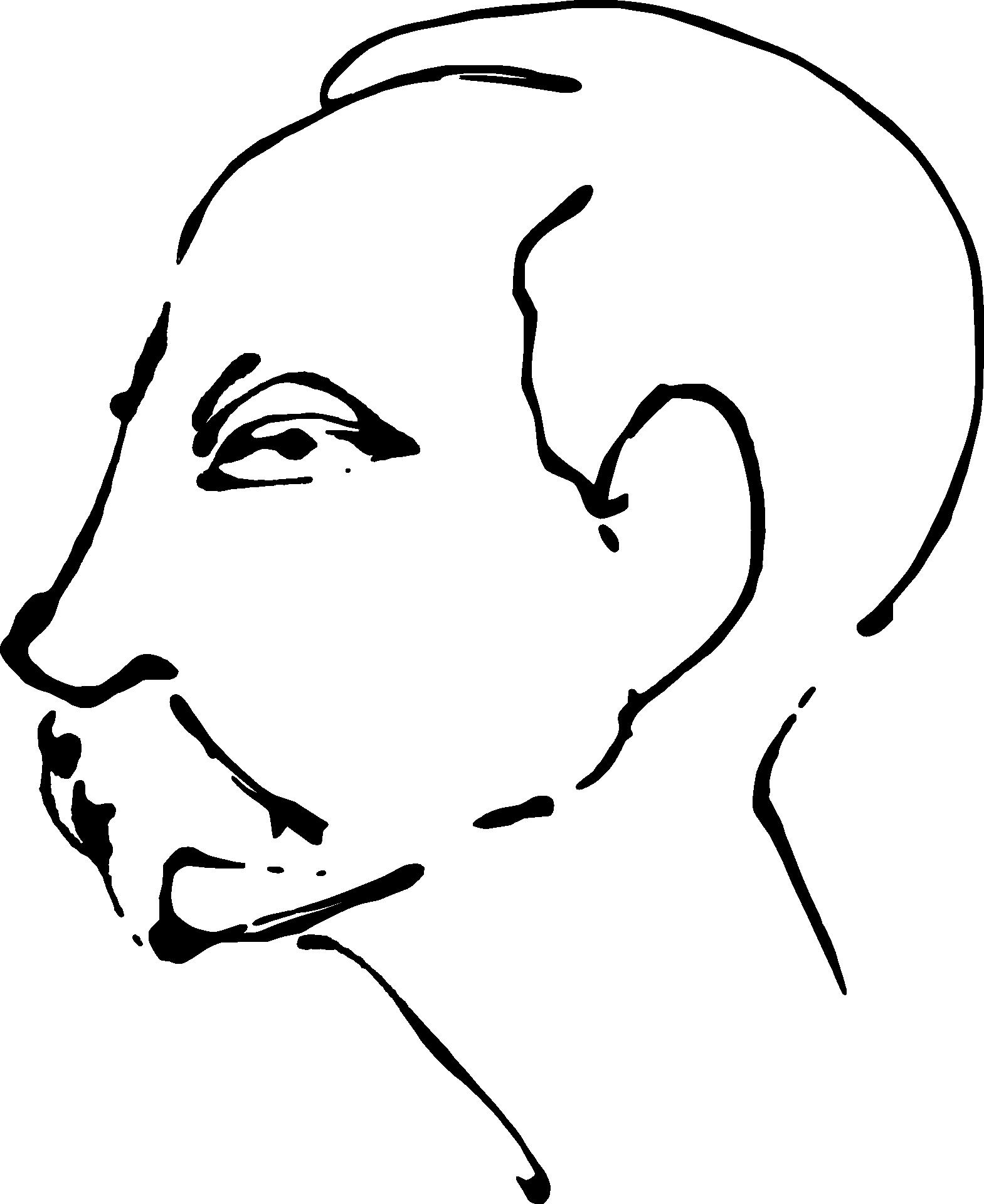 Profile Of Moustache Man Sketch Free Image