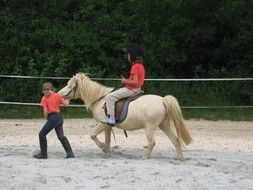 children ride pony