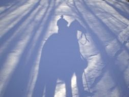 shadow of cowboy riding horse on snow