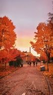 people walking in park at autumn sunset, finland