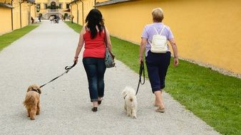 women walking with dogs