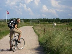 bike meadow man cow denmark