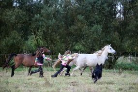 running horses, children and a dog