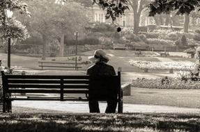 photo of an old woman on a park bench
