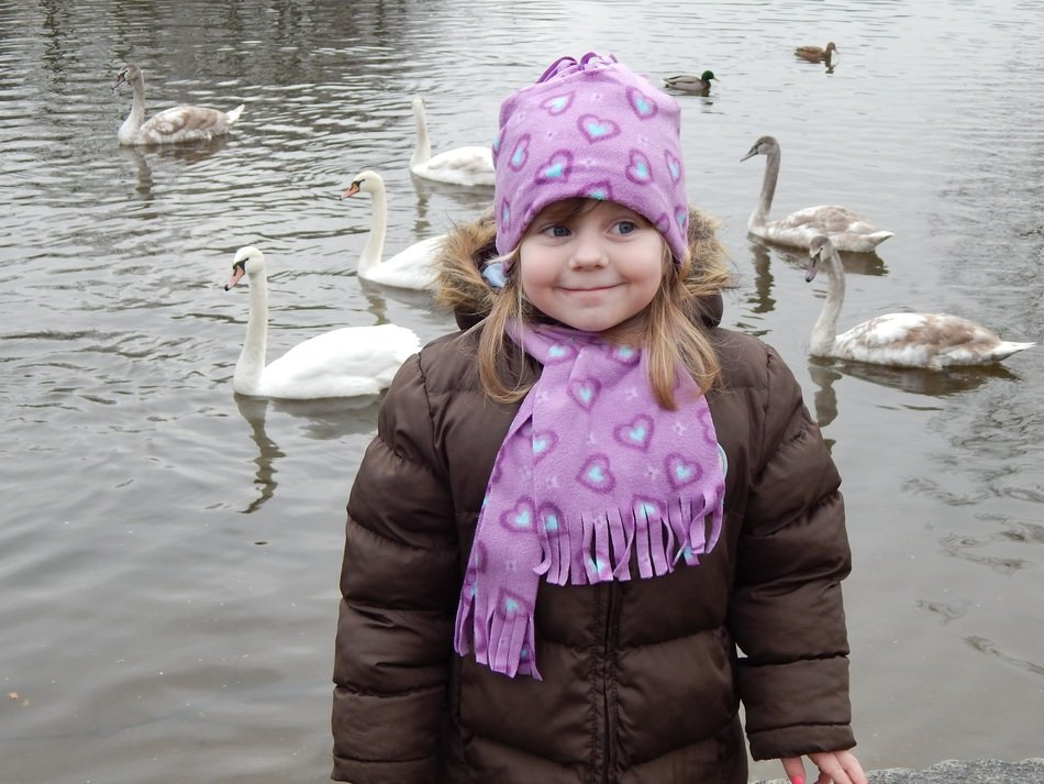 little girl is walking near the lake with swans