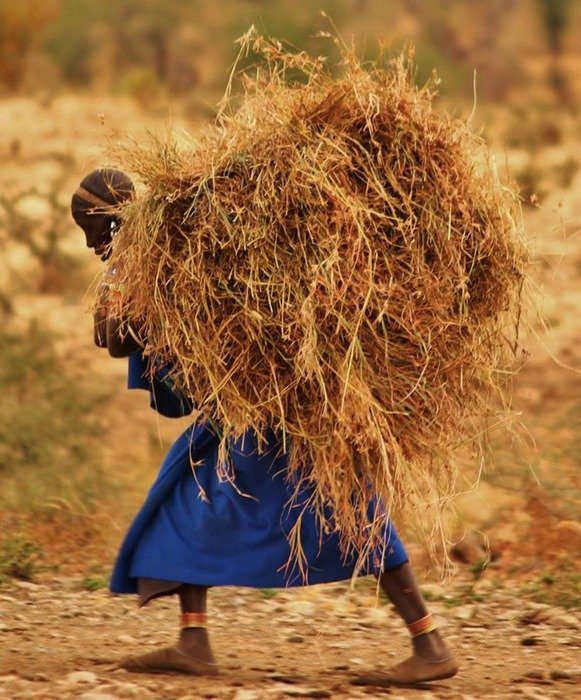 massai people Tanzania