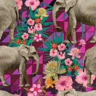 Samless pattern with indian elephants Hand drawn vector