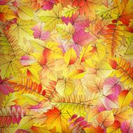 Colorful fallen autumn leaves EPS 10 N2