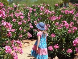 little girl is walking in the garden