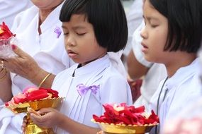 buddhists girls hold rose petals in golden bowls