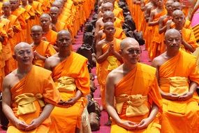 monk buddhists group sitting
