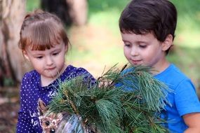 children with a dog and pine branches