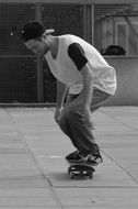 skater on the board