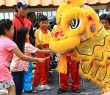 Celebration of the Chinese New Year