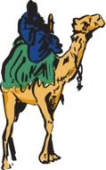 camel man riding drawing