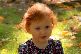 innocence in the face of russet baby girl on the background of autumn nature