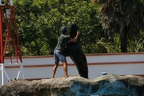man hugging with sea lion
