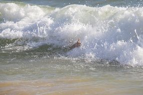 Man playing in good wave