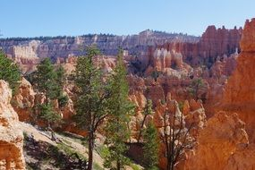 landscape of the bryce canyon national park