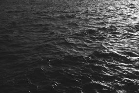 black and white photo of the sea water