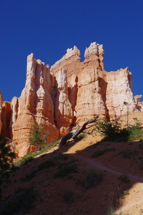 scenic bryce canyon in Utah
