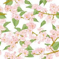 Seamless pattern with spring flowers Apple and cherry blossom N2