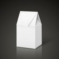 white cardboard carry bag packaging