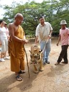 buddhist monk and man with leashed tiger