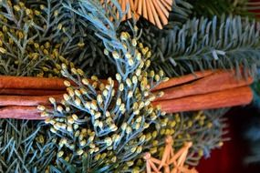 closeup of advent wreath
