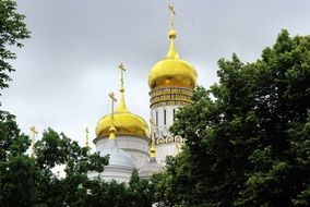 the domes of the Russian church behind the trees