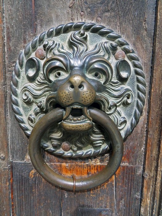 door lion bronze wood macro