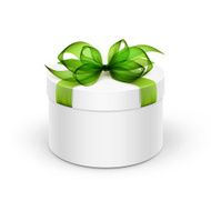 White Round Box with Light Green Ribbon and Bow Isolated