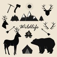 Wildlife camping and adventure vector elements set