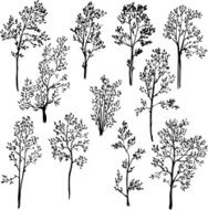 set of different spring trees N2