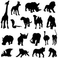 African animals silhouette collection N2