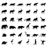 African Animal Silhouettes N5
